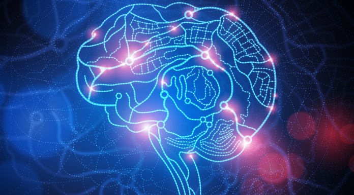 brain-pill-review-supplement-best-nootropic