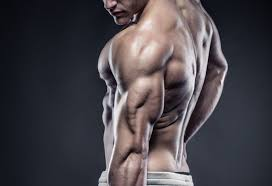 Sarms and its Benefits